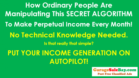 PUT YOUR INCOME GENERATION ON AUTOPILOT!